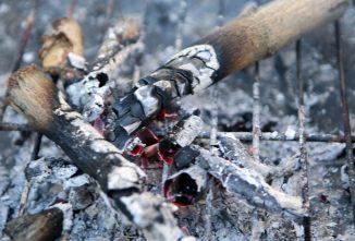 Homemade Barbecue Pits: A Fun Way to Fertilize Your Soil