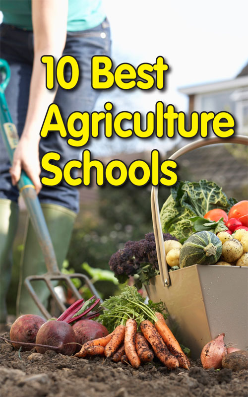 best-agriculture-schools