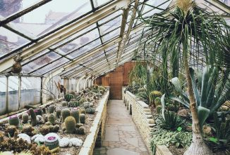 How Do Greenhouses Work?