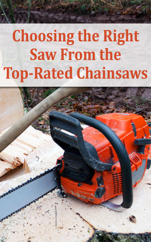 Top-Rated Chainsaws
