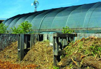Composting And Compost Bin Designs