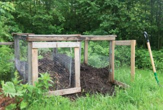 How to Start Composting: You, Too, Can Be a Composting Fool