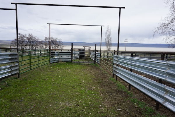 How to Build Durable Pipe Corrals
