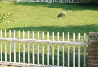 Fencing For Creatures Great And Small