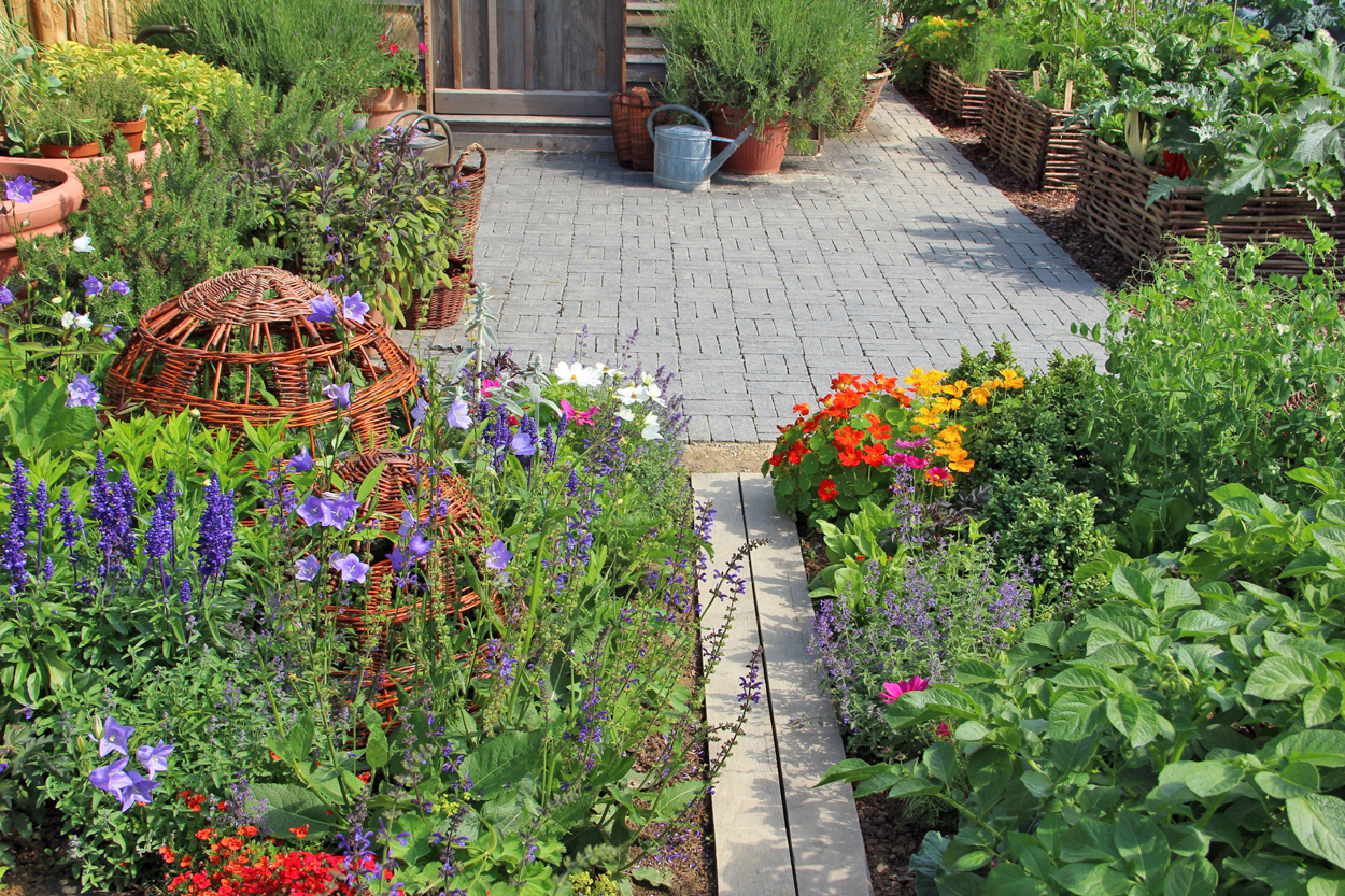 Growing Herbs Outdoors? Try These 7 Garden Themes