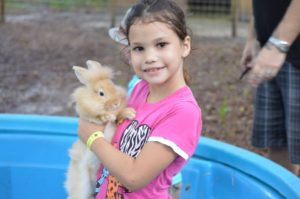 Petting zoos are a great way to make some extra money on a homestead. Photo courtesy of HarvestMoon Farms.