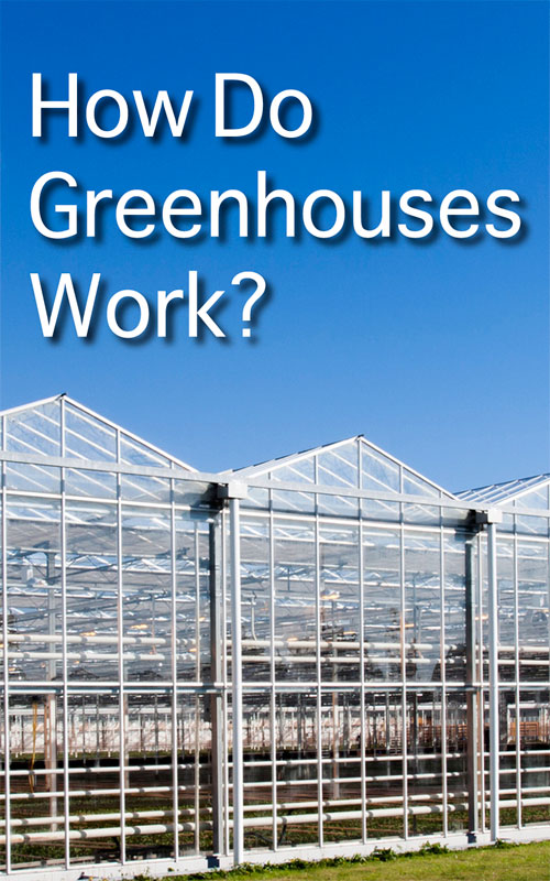 How Greenhouses Work