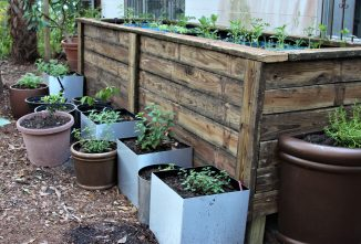 Recycling a Deck into Standing Raised Bed