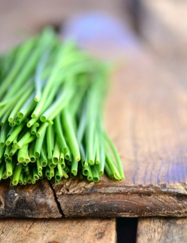 growing-chives