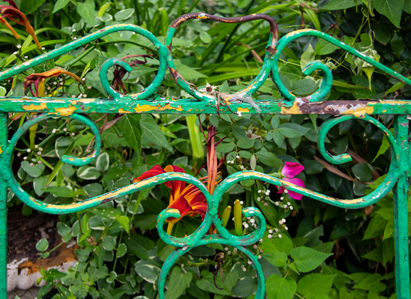 Building Your Garden with Upcycled Garden Ideas