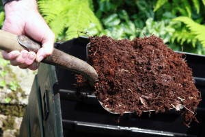 Fertilizer Numbers and the Basics of Fertilizing Vegetables