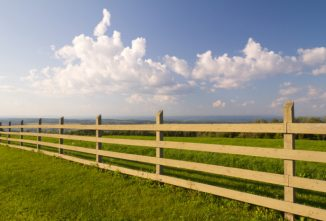 5 Homestead Fencing Mistakes to Avoid