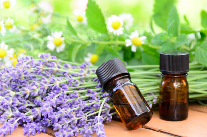 Home Remedies for Headaches Using Essential Oils and Herbs