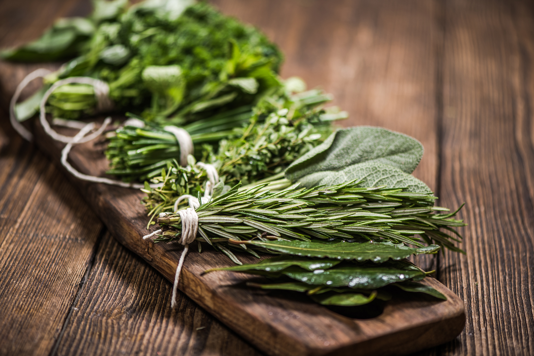 A Guide to Herbs That Grow in Winter