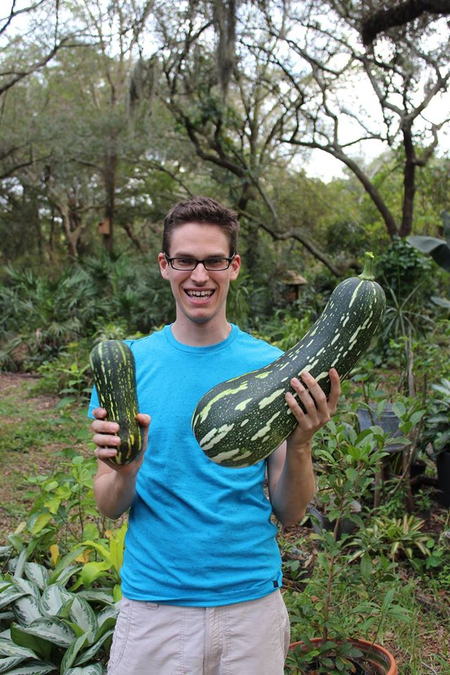 growing-squash-in-containers