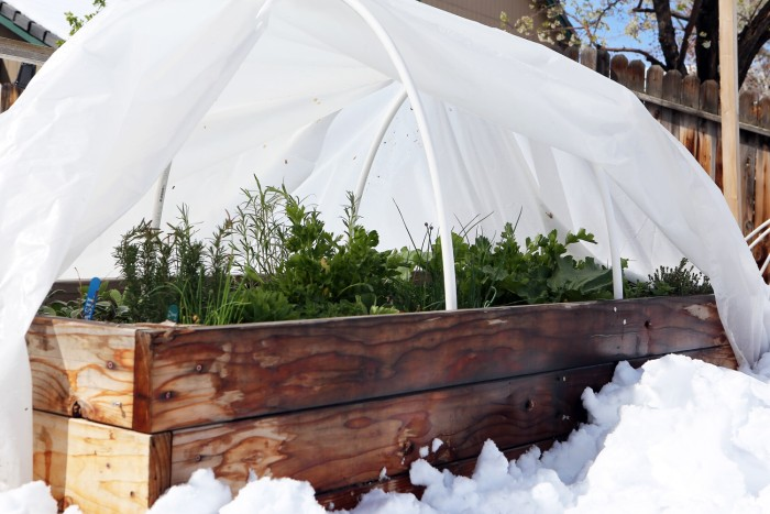 Garden Hoops: Low Tunnels for Frost and Insect Protection