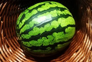 6 Uses For Your Watermelon Plant's Bounty