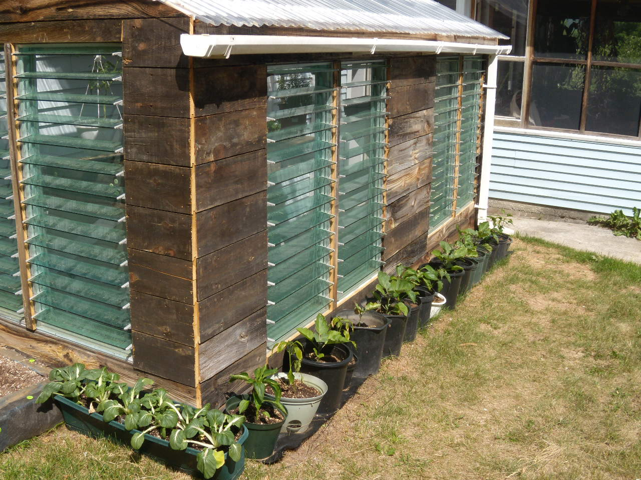 how-to-make-a-cheap-greenhouse