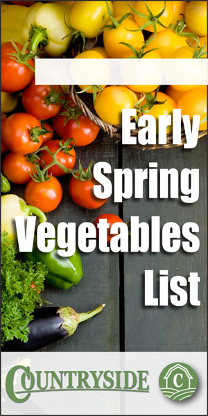 Early Spring Vegetables