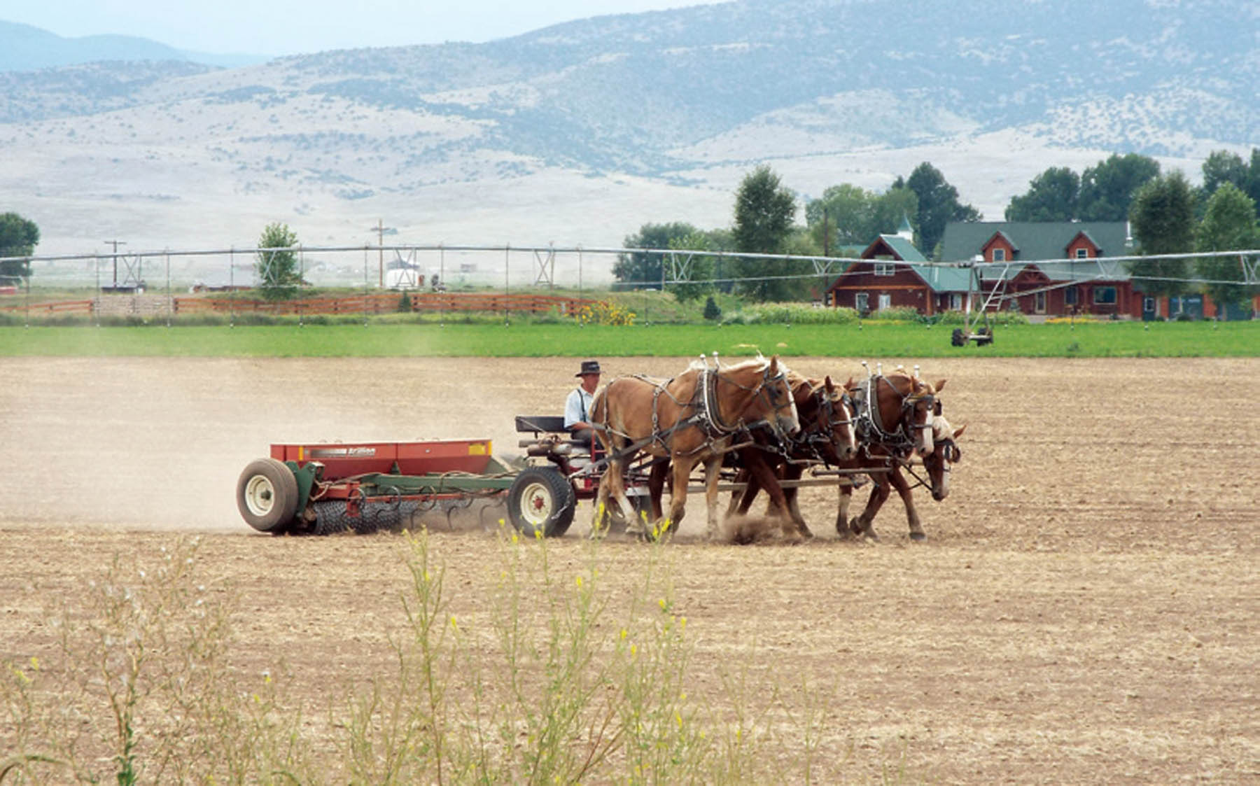 Farming In The San Luis Valley, Then And Now