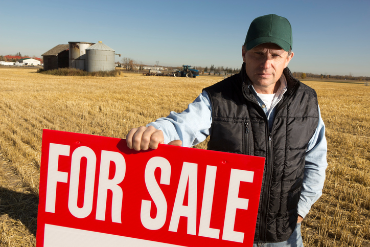The Dos and Don'ts of Buying a Homestead