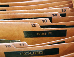Seed-Filing System