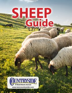 Sheep Guide Cover
