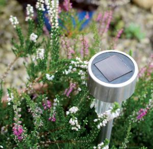 Solar lights, waterers and feeders are cost-effective
