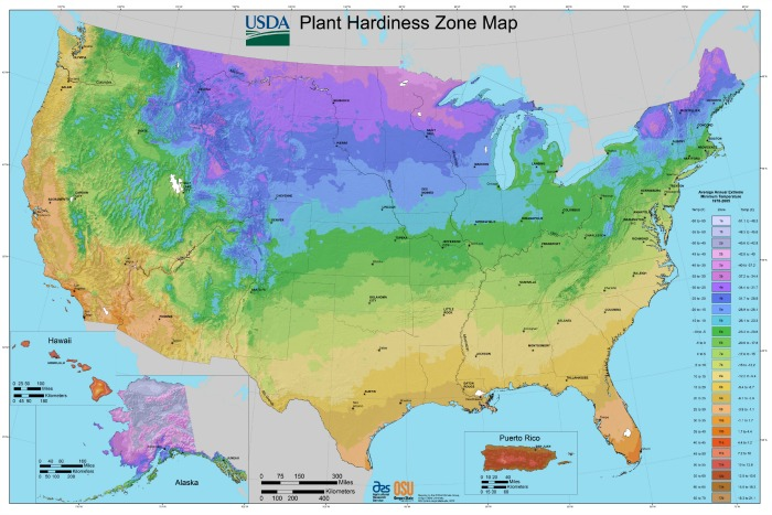 what-planting-zone-am-i-in