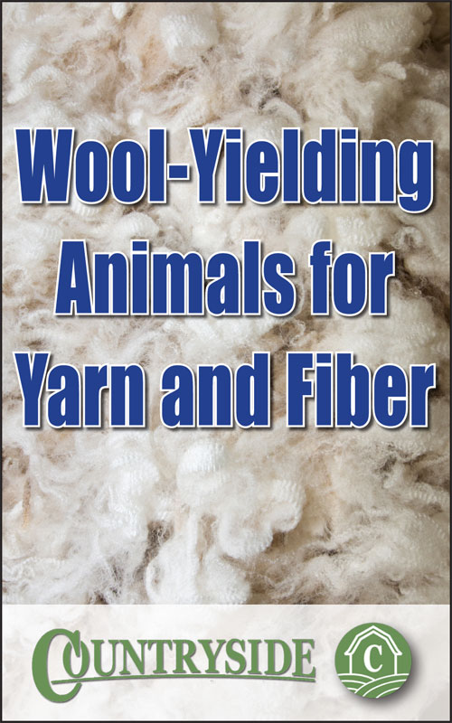 Wool-Yielding Animals