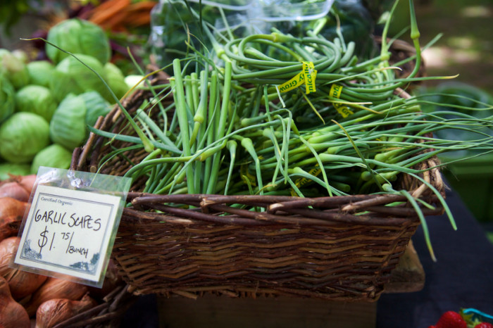 Fun and Flavorful Garlic Scapes Recipes