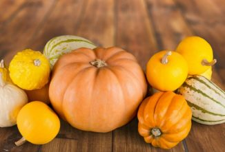 Your Guide to Growing Winter Squash