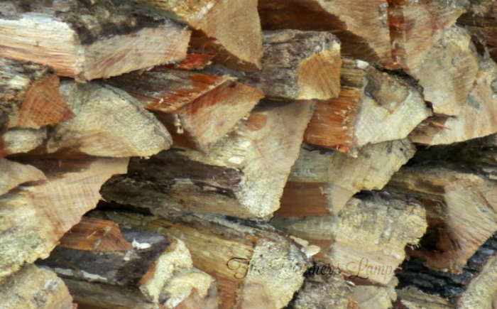 What is the Best Way to Store Firewood?