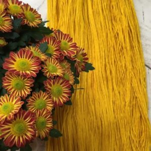 natural dyes for wool