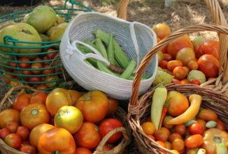 Growing a Traditional Victory Garden