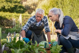 Homesteading After Retirement: Part 1