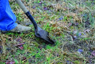 How to Take an Accurate Soil Sample